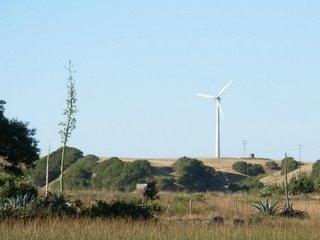Energía eólica en Loanco